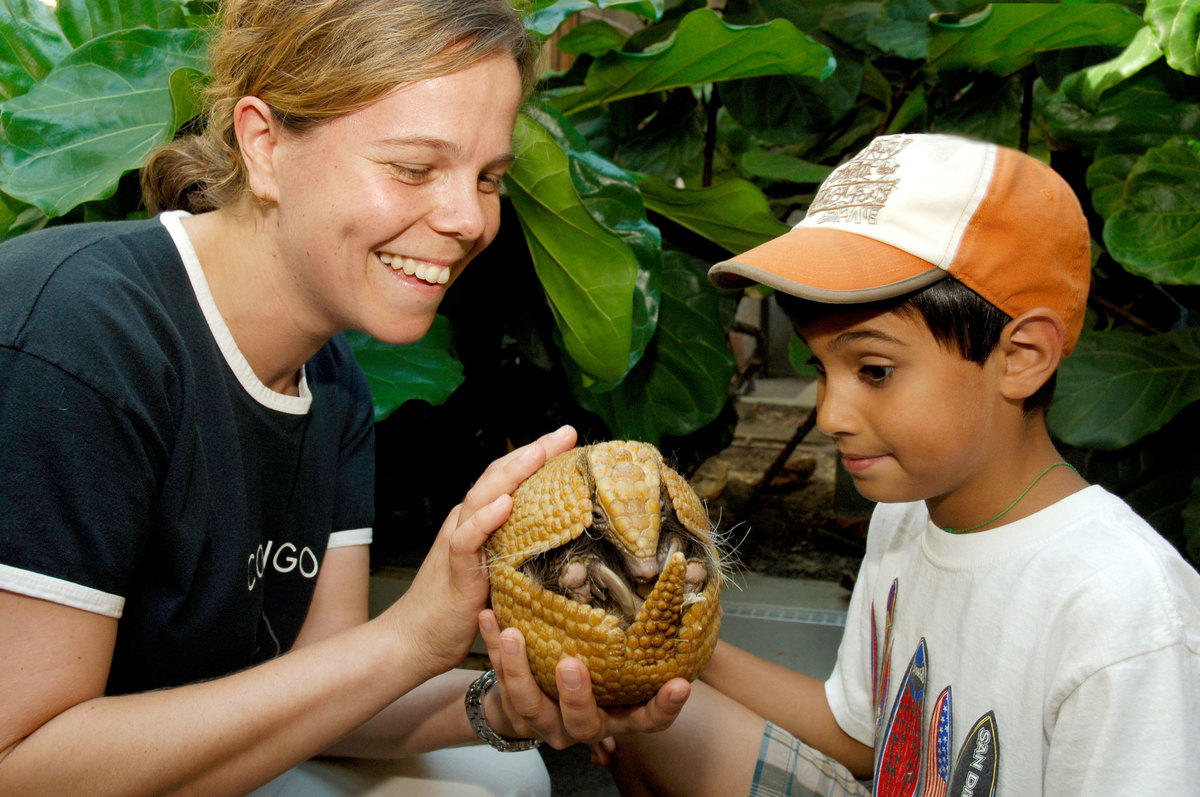 12yrfxud95 7fyvf8koai julie larsen maher 1522 animal kingdom camp child with educator and nine banded armadillo bz 08 26 05 hr