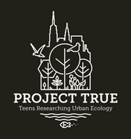 Project True Logo