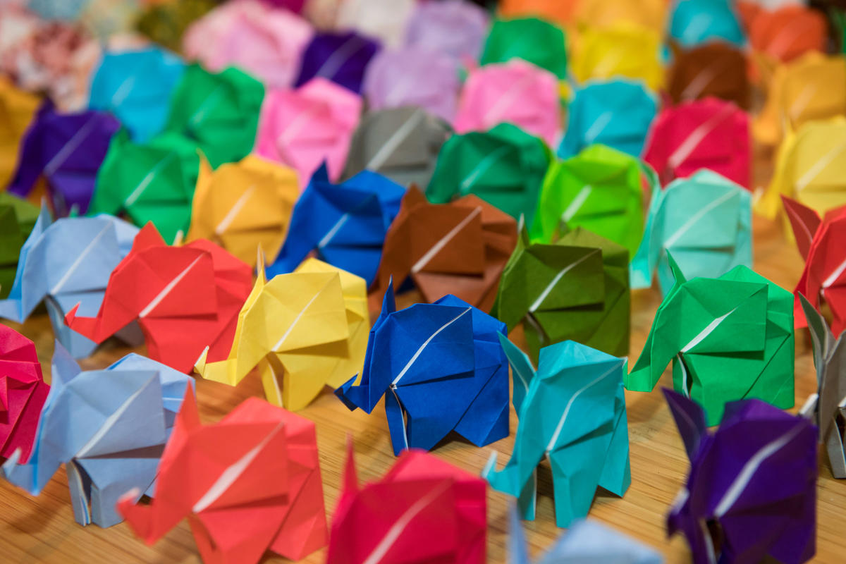 2a6g2f62sl julie larsen maher 4924 elephant origami set up in schiff hall bz 11 14 16 hy
