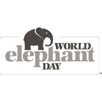 WCS World Elephant Day Logo