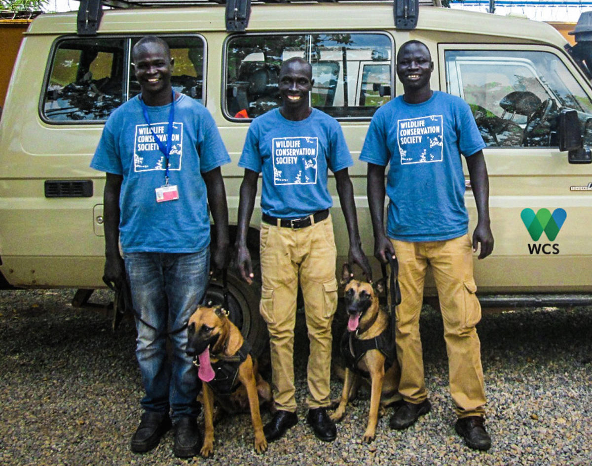 6uggrd4d8i fb ig sniffer dogs south sudan img 0541