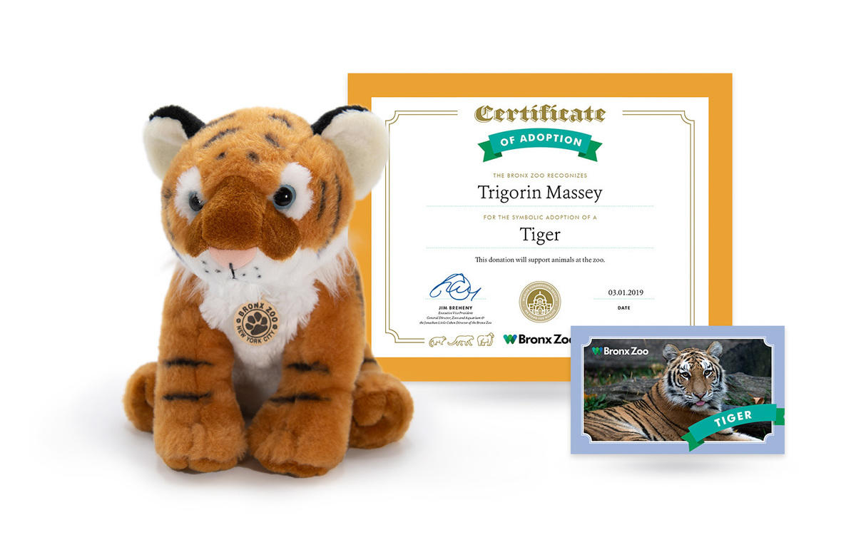 8n9gpzkaa4 bz animal adoption tiger package 2019