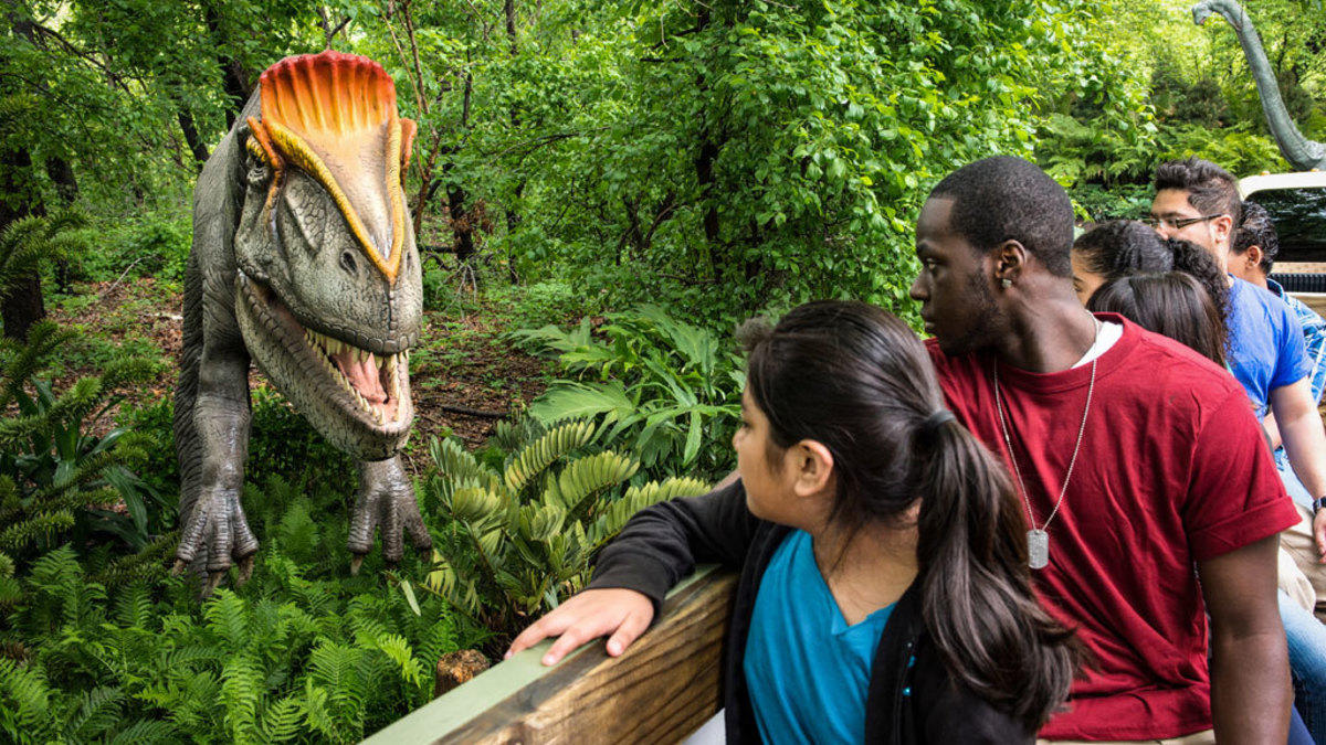 1oiq4ug6g  julie larsen maher 6263 dinosaur safari ride visitors adults and children bz 05 20 13 hy