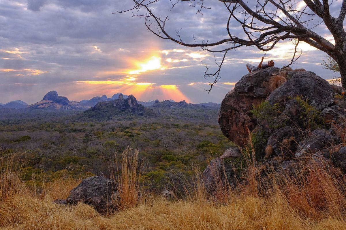 19rh4il52n view of mbatamila inselberg range niassa reserve mozambique